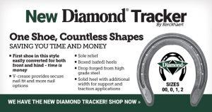 Diamond Tracker Horseshoe by Kerckhaert